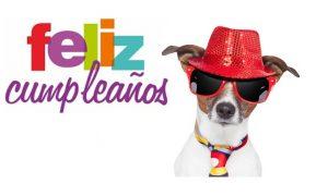 Imágenes de perros felicitando tu cumpleaños